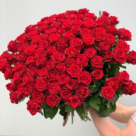 101 красная Роза перевязанная атласной лентой