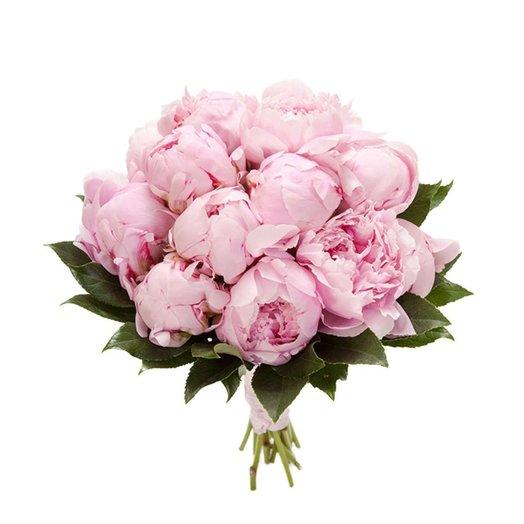 Букет из 15 пионов: букеты цветов на заказ Flowwow