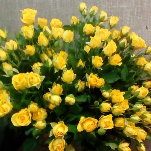 Букет из 25 желтых кустовых роз 60 см: букеты цветов на заказ Flowwow