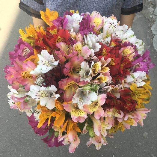 Букет из 30 разноцветных альстромерий: букеты цветов на заказ Flowwow