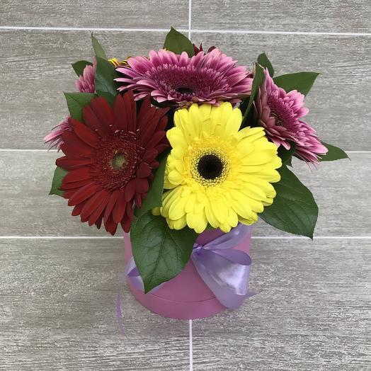 Герберы в шляпной розовой коробочке: букеты цветов на заказ Flowwow