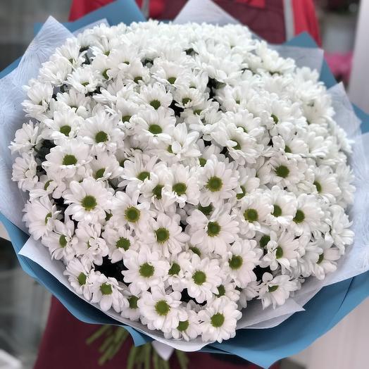 Белый гигант🌼: букеты цветов на заказ Flowwow
