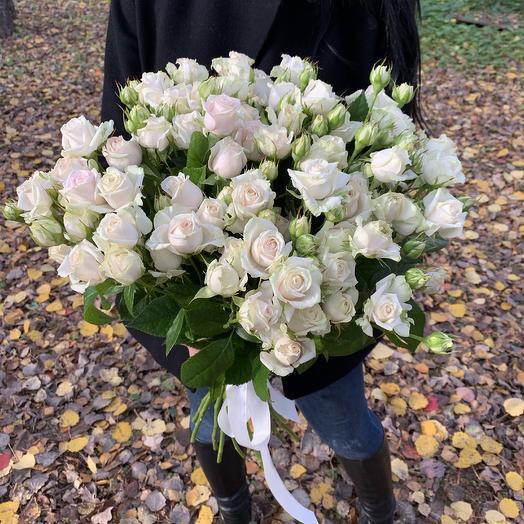 Букет из 19 веток розовых кустовых пионовидных роз: букеты цветов на заказ Flowwow
