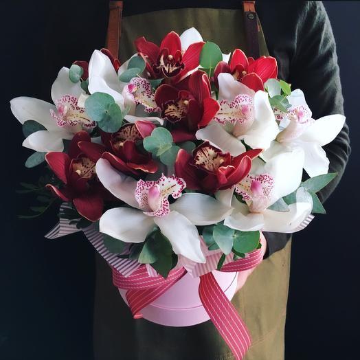 Орхидеи микс 🍒