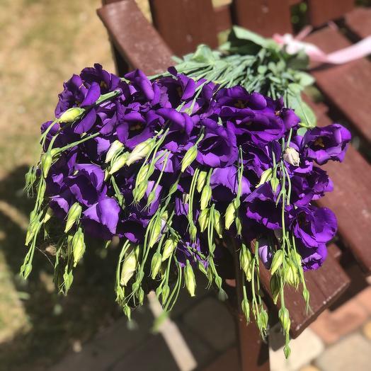 Фиолетовые эустомы
