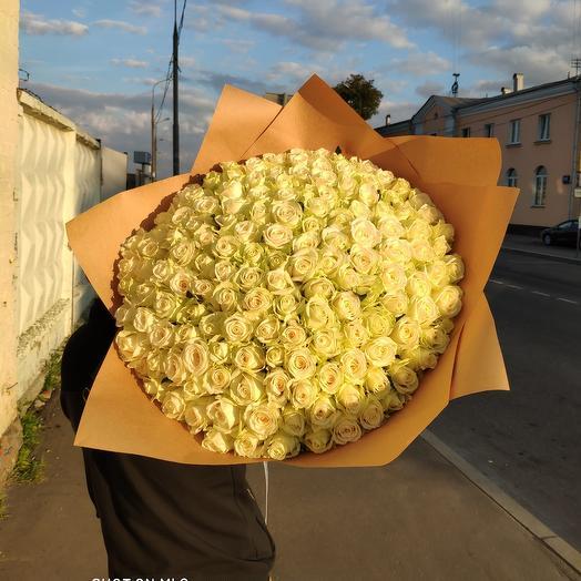 201 штук белых роз Премиум