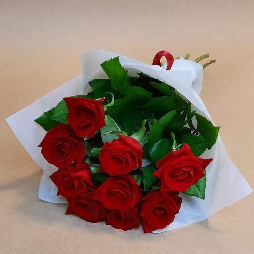 Роза Россия 9 шт