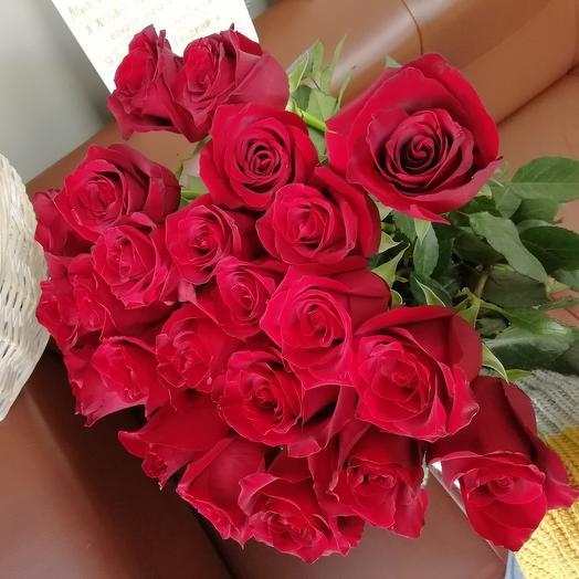 Роза 25 шт красная. Эксплорер