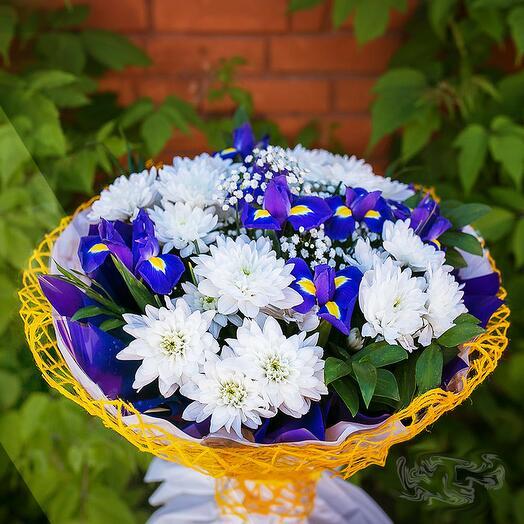 Ирисы с хризантемой