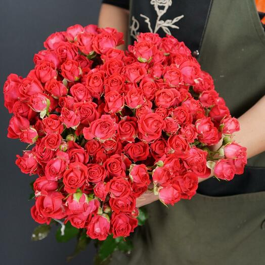 21 Кустовая роза Чери хеопс