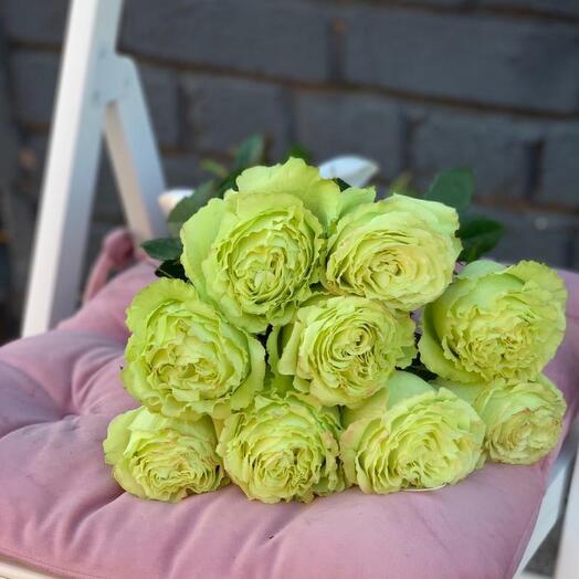 Монобукет 9 Зелёных роз 60см