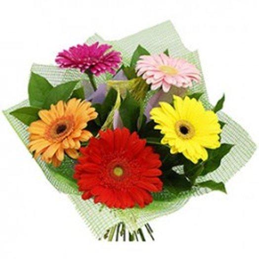 5 гербер с зеленью. Код 180051: букеты цветов на заказ Flowwow