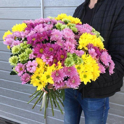 Букет из 25 разноцветных хризантем: букеты цветов на заказ Flowwow