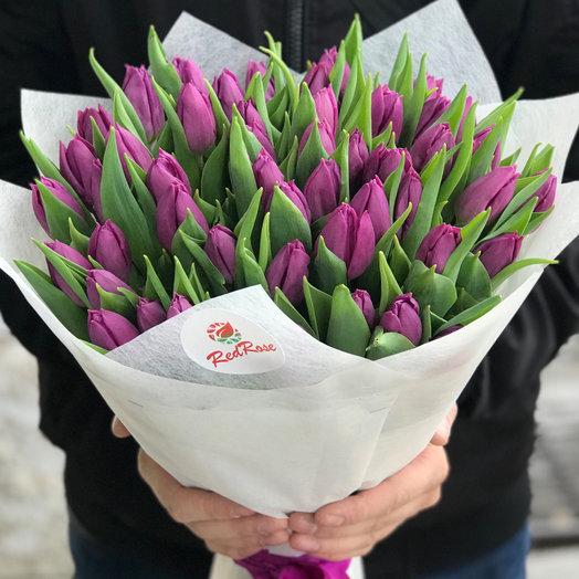 Букет из 49 фиолетовых тюльпанов