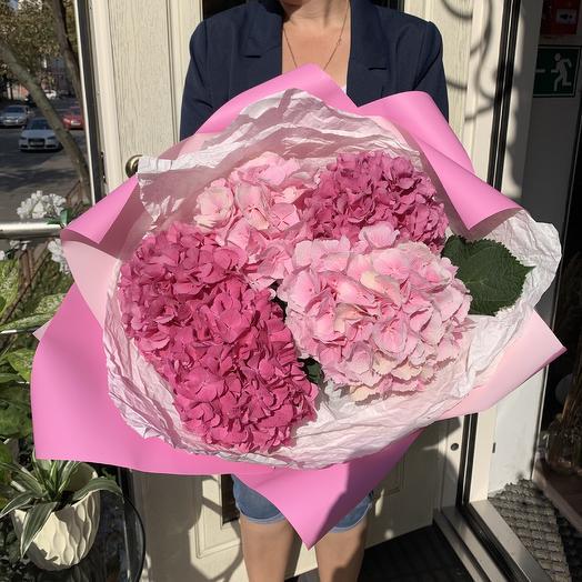 Шикарная гортензия: букеты цветов на заказ Flowwow