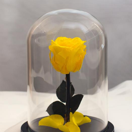 Роза в колбе RozaRose Мини Желтая