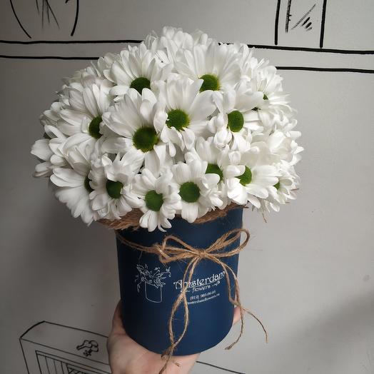 Букет в коробке Хризантема: букеты цветов на заказ Flowwow