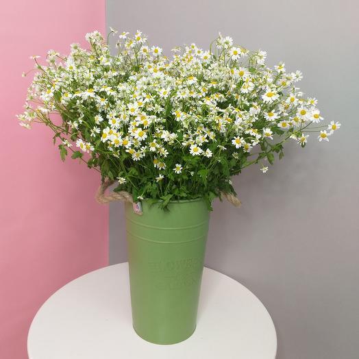 "Кашпо ""Ромашки"": букеты цветов на заказ Flowwow"