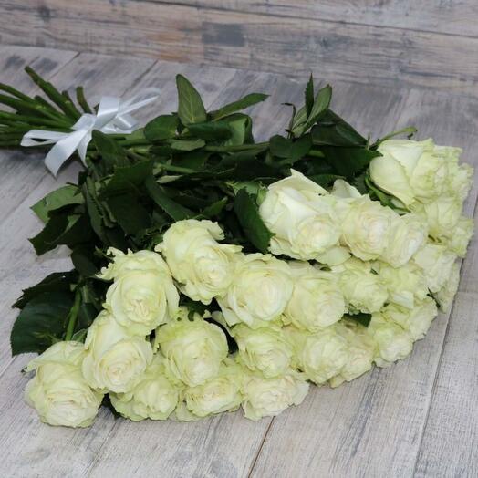 Роза Мондиаль Эквадор 25 штук