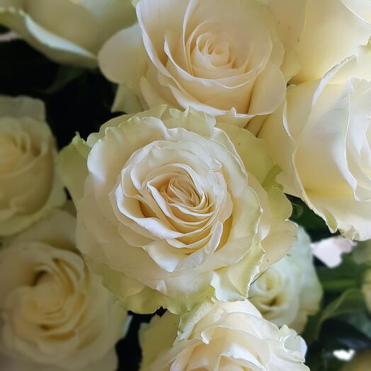 Букет з піановидної троянди