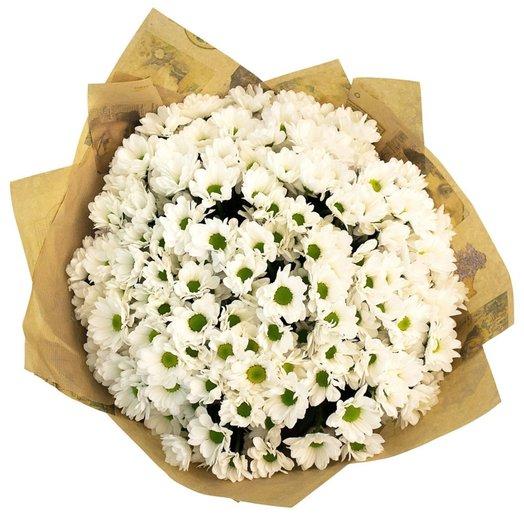 25 білих хризантем