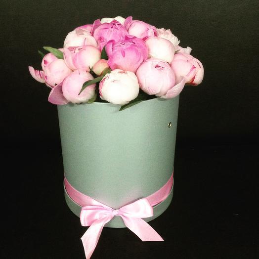 Шляпная коробочка с 19 пионами Сара Бернар: букеты цветов на заказ Flowwow