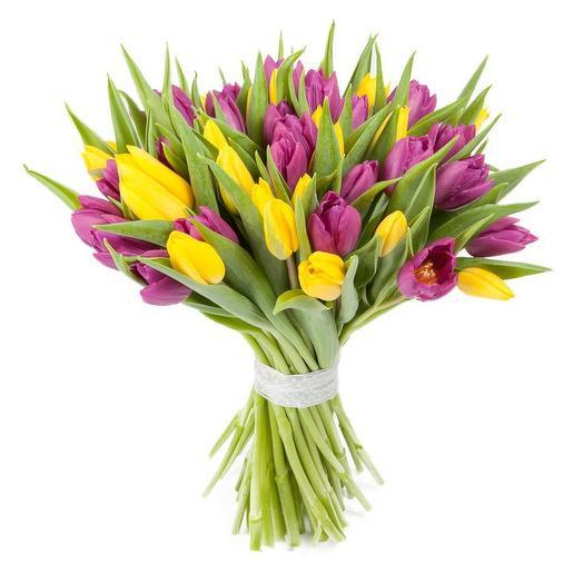 "Букет из 51 тюльпана ""Алсмеер"": букеты цветов на заказ Flowwow"