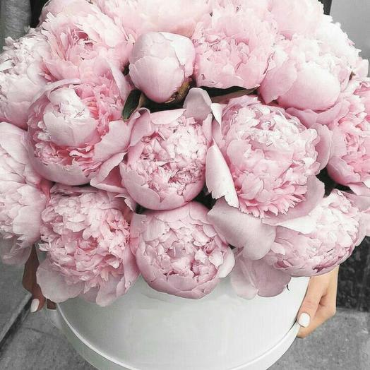 Пионы в шляпной коробке 39 шт: букеты цветов на заказ Flowwow