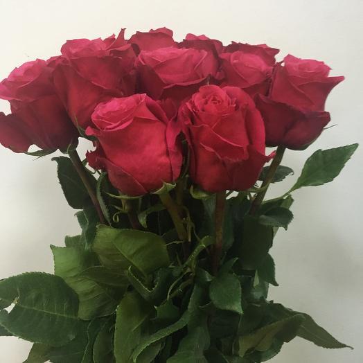 Роза Розовая 17 шт: букеты цветов на заказ Flowwow