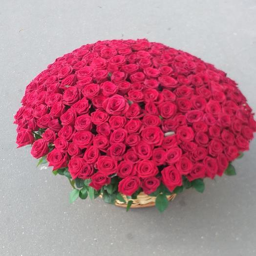 Корзина из 251 роза