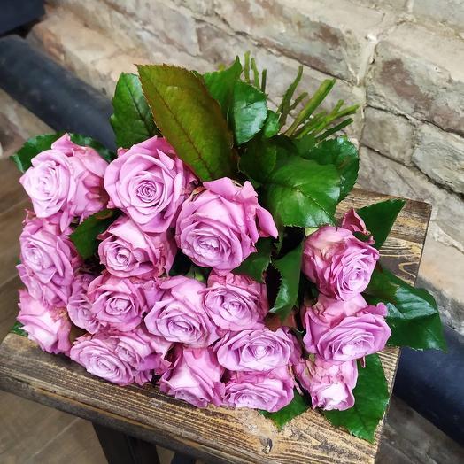 Роза Маритим 15