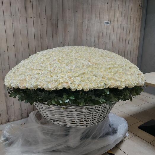 Корзина Тысяча роз
