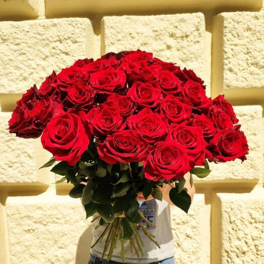 Букет из 49 эквадорских роз 70см
