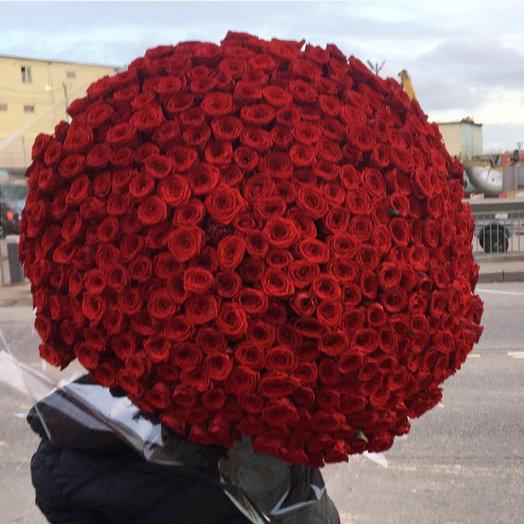 501 красная роза🌹: букеты цветов на заказ Flowwow