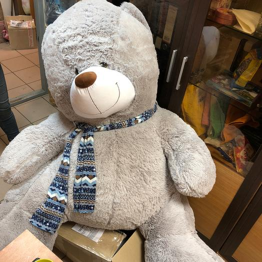 Медведь Балу: букеты цветов на заказ Flowwow