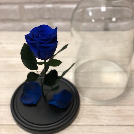 Синяя Роза Premium: букеты цветов на заказ Flowwow