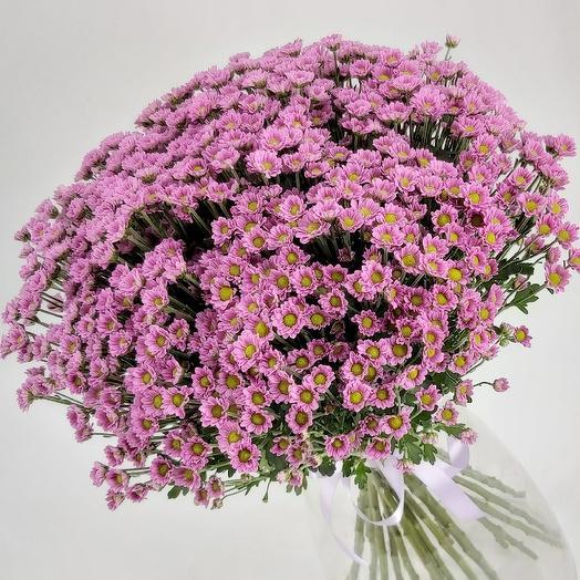 Охапка фиолетовых ромашек: букеты цветов на заказ Flowwow