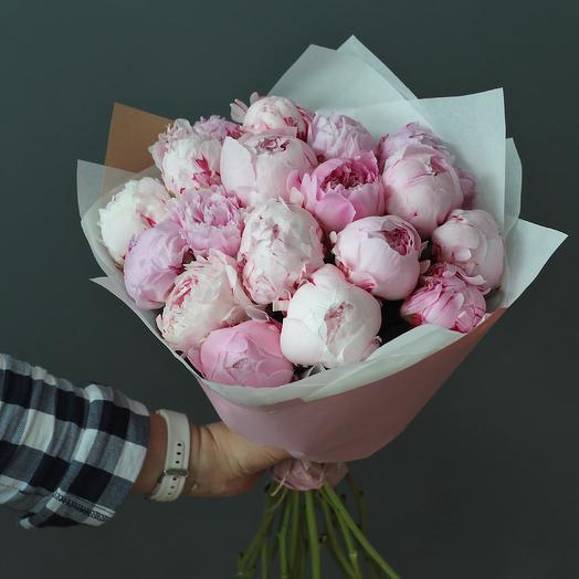Пионы сара бернар в дизайнерской упаковке 19 шт: букеты цветов на заказ Flowwow