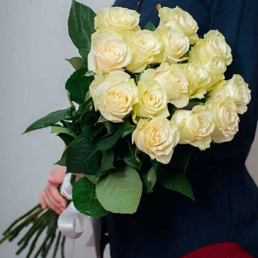 Роза мондиал