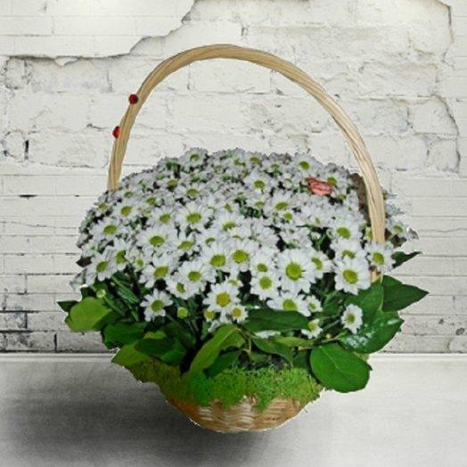 Шик: букеты цветов на заказ Flowwow