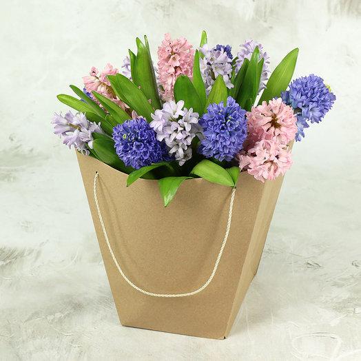 15 разноцветных гиацинтов в крафт-пакете: букеты цветов на заказ Flowwow