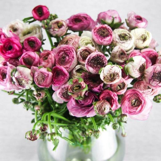 Охапка ранункулюсов: букеты цветов на заказ Flowwow
