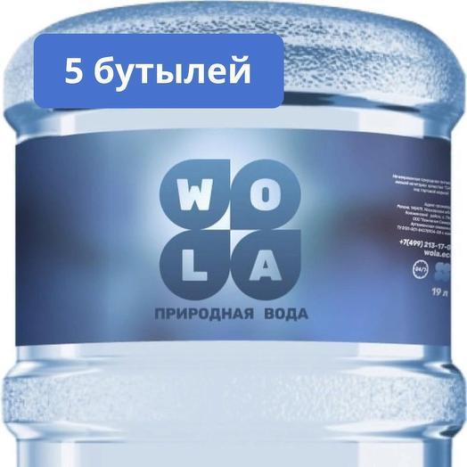 Комплект природной воды, высшая категория, 5 бутылей, тара многооборотная: букеты цветов на заказ Flowwow