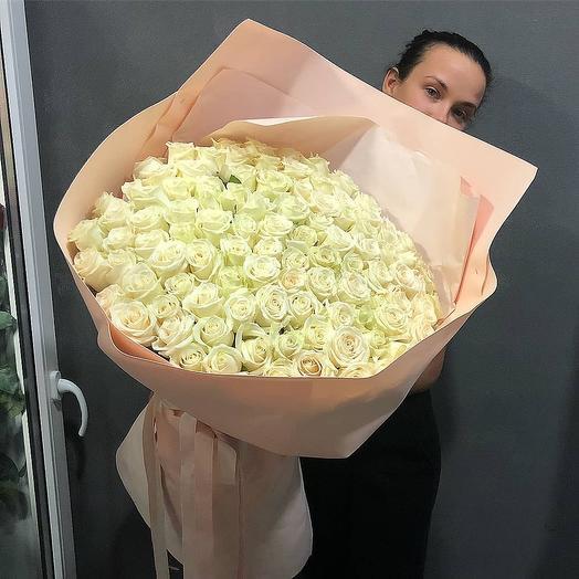 101 white roses, Paradise