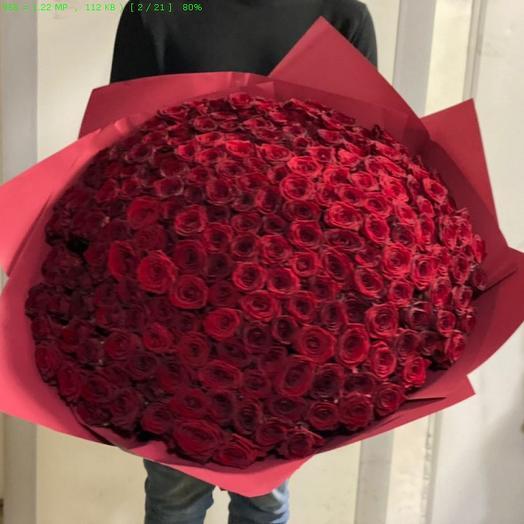 Букет из 251 красной розы - Премиум