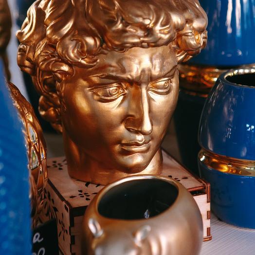 Кашпо Давид в бронзовом цвете
