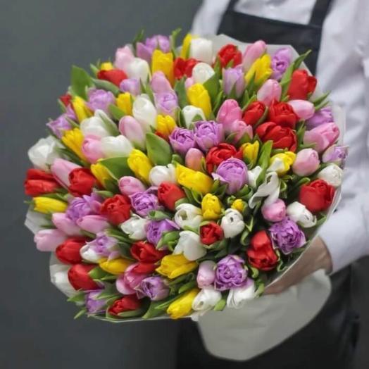 101 тюльпан Vip