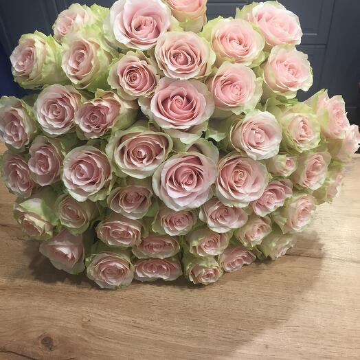 Роза Frutetta