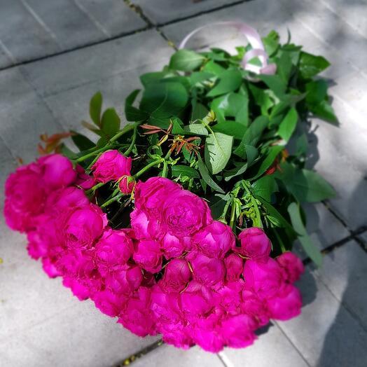 Пионов розы