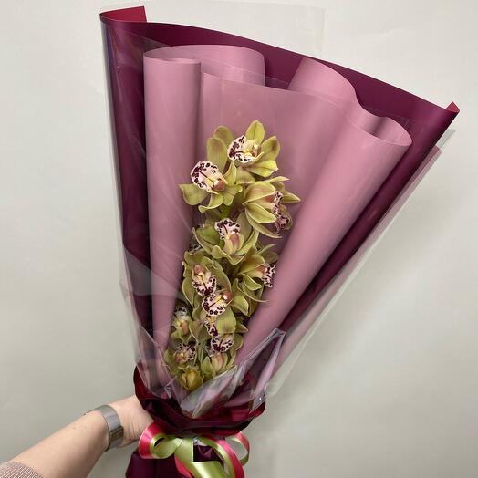 Красотка Орхидея. Мокко